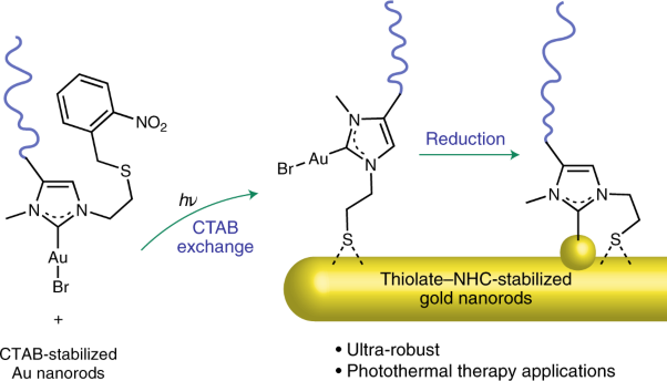 Robust gold nanorods stabilized by bidentate N-heterocyclic-carbene–thiolate ligands