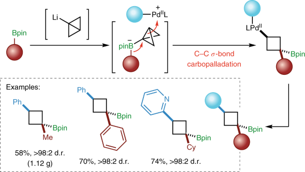 Carbopalladation of C–C <i>σ</i>-bonds enabled by strained boronate complexes