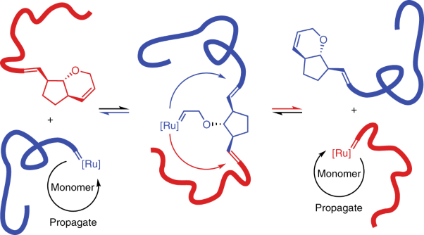 Catalytic living ring-opening metathesis polymerization with Grubbs' second- and third-generation catalysts