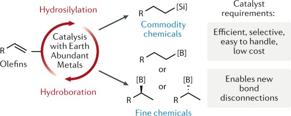 Earth-abundant transition metal catalysts for alkene hydrosilylation and hydroboration