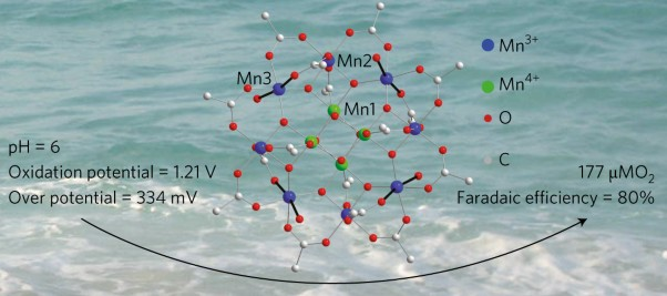 A bioinspired soluble manganese cluster as a water oxidation electrocatalyst with low overpotential