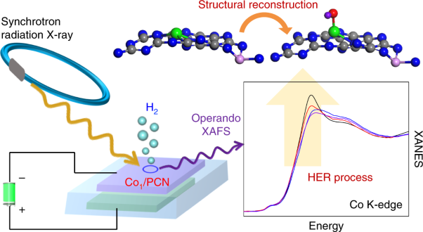 Identification of single-atom active sites in carbon-based cobalt catalysts during electrocatalytic hydrogen evolution