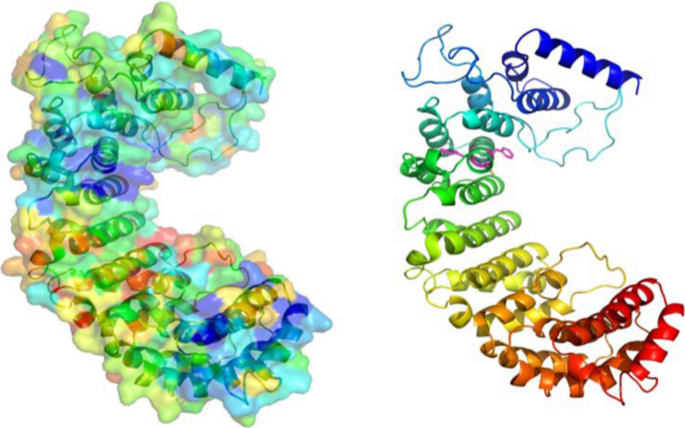 Evolution, structure and emerging roles of C1ORF112 in DNA ...