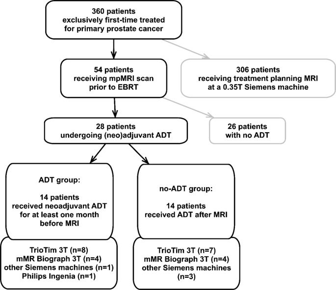 Impact of androgen deprivation therapy on apparent diffusion ...
