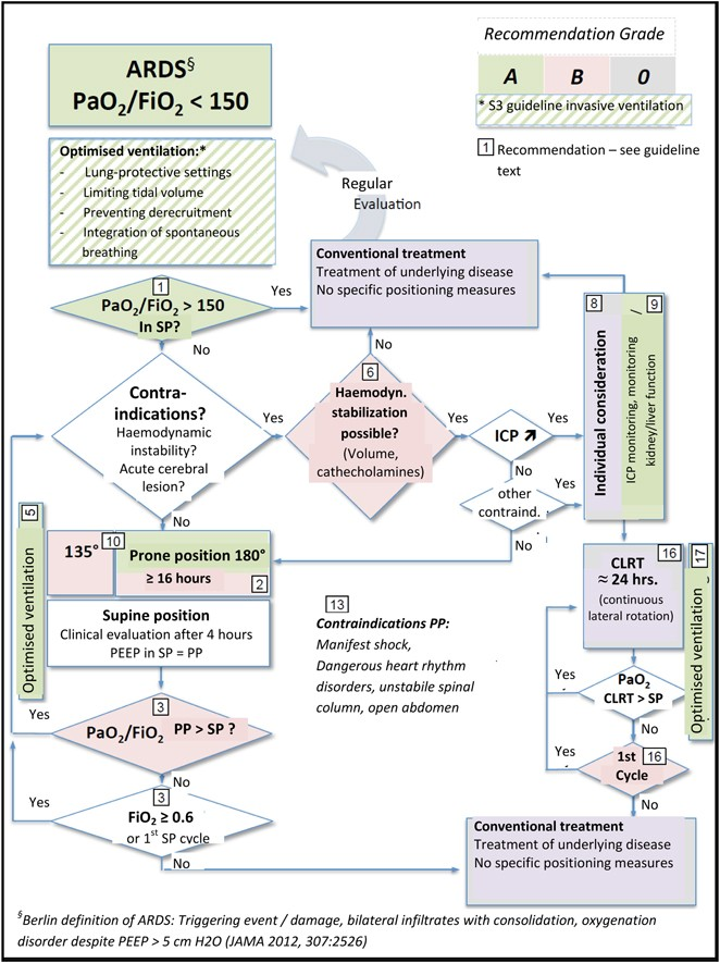 S2e guideline: positioning and early mobilisation in prophylaxis ...