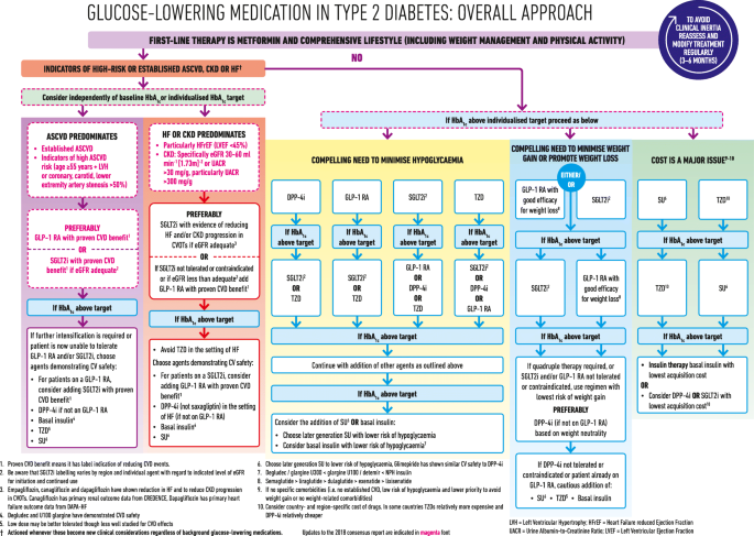 2019 Update To Management Of Hyperglycaemia In Type 2 Diabetes