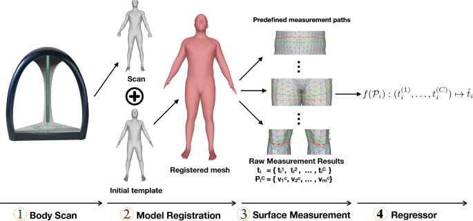 Anthropometric clothing measurements from 3D body scans   SpringerLink