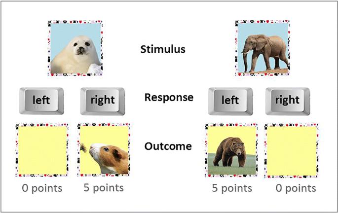 Impairments in reinforcement learning do not explain enhanced ...