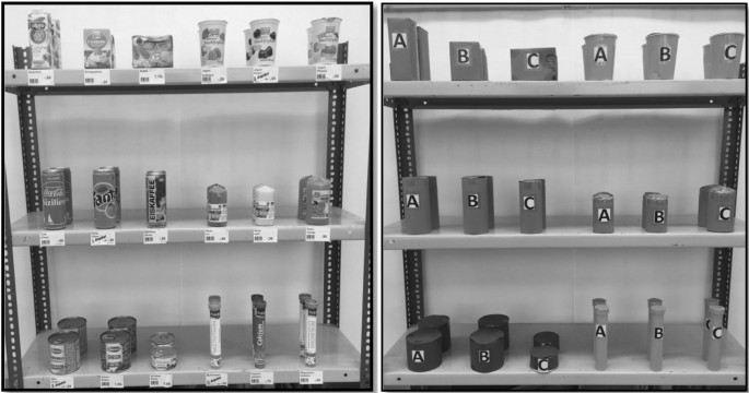 Ecological validity of manual grasping movements in an everyday ...