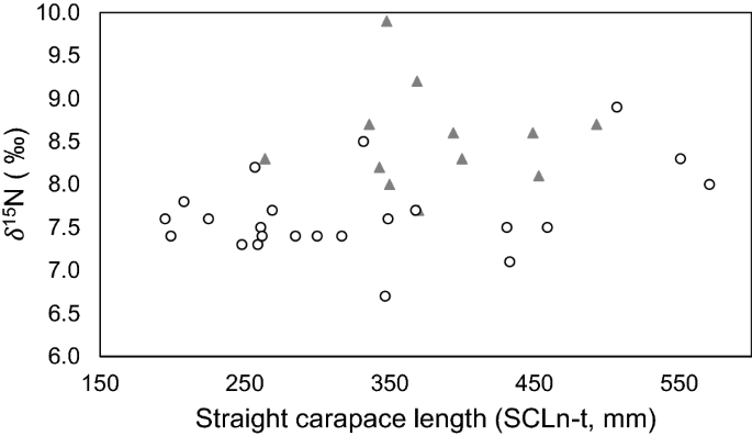 Evidence for trophic differences between live and bycatch oceanic ...