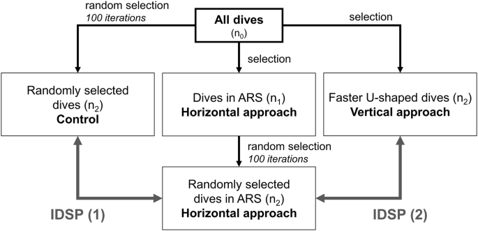 Comparing the horizontal and vertical approaches used to identify ...