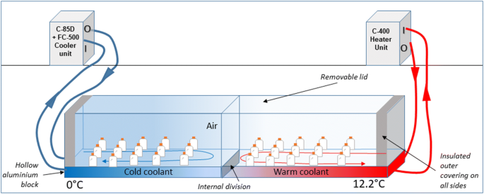 Routine metabolism of Antarctic krill (Euphausia superba) in South ...
