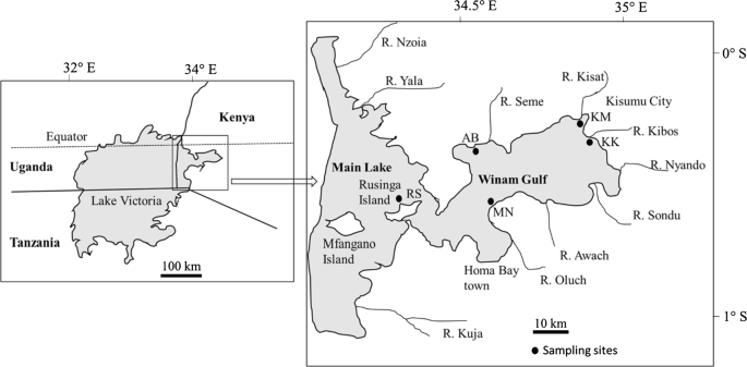 Trace Elements in Crustaceans, Mollusks and Fish in the Kenyan ...