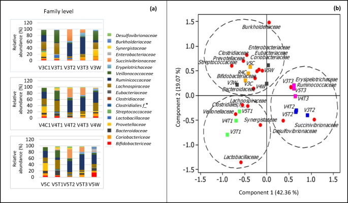 Modulation of gut microbiota from obese individuals by in vitro ...