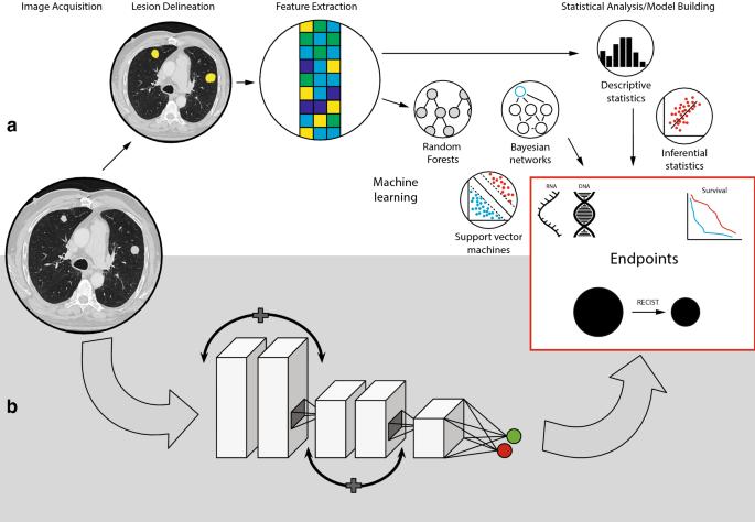 Radiogenomics: bridging imaging and genomics   SpringerLink