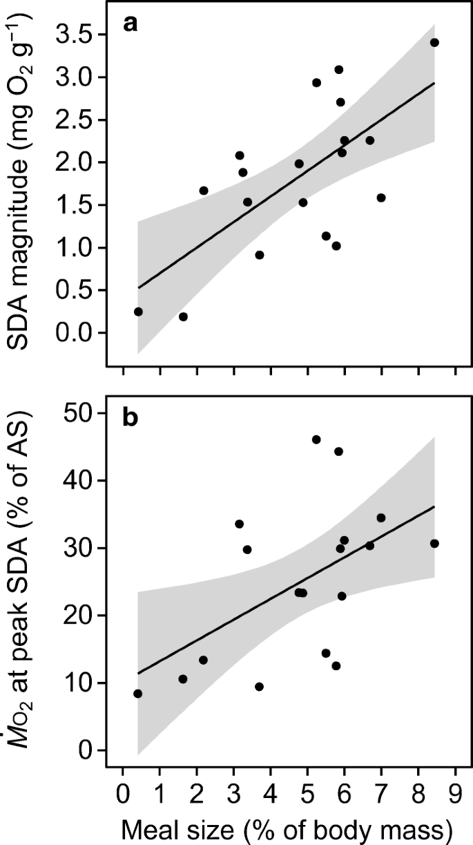 Predator presence affects activity patterns but not food ...