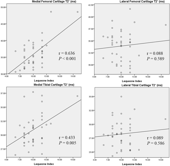 The value of MR T2* measurements in normal and osteoarthritic knee ...
