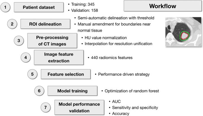 Identifying EGFR mutations in lung adenocarcinoma by noninvasive ...