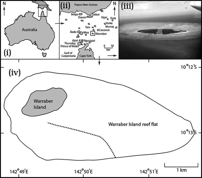 Mass-transfer-limited nitrate uptake on a coral reef flat ...
