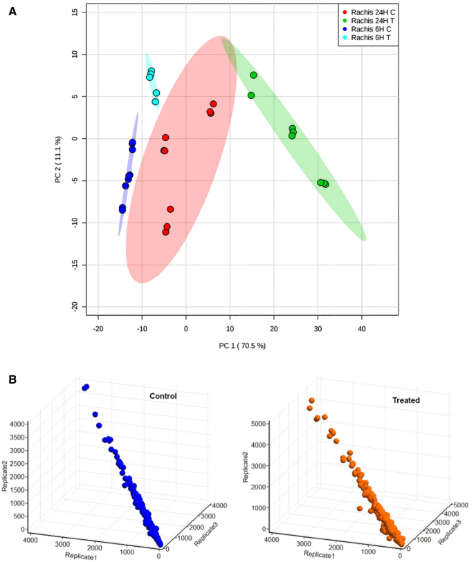 Whole Proteome Analysis of GA 3 Response at Panicle Stage in Grape ...