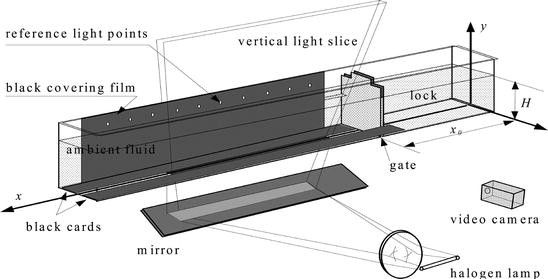 The structure of the head of an inertial gravity current ...