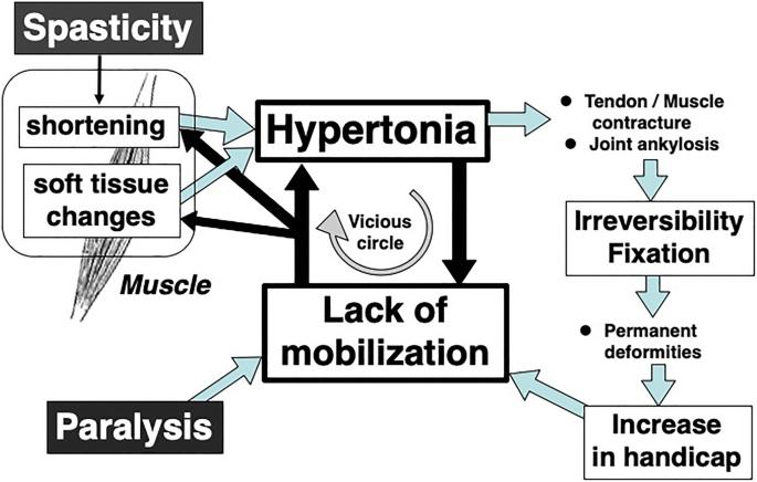 1 sztepp hipertónia