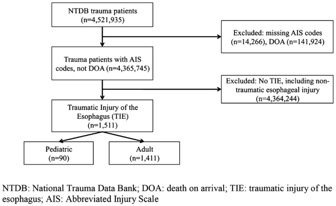 Comparative analysis of traumatic esophageal injury in pediatric ...