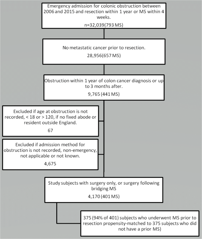Outcomes Of Colorectal Stents When Used As A Bridge To Curative Resection In Obstruction Secondary To Colorectal Cancer Springerlink