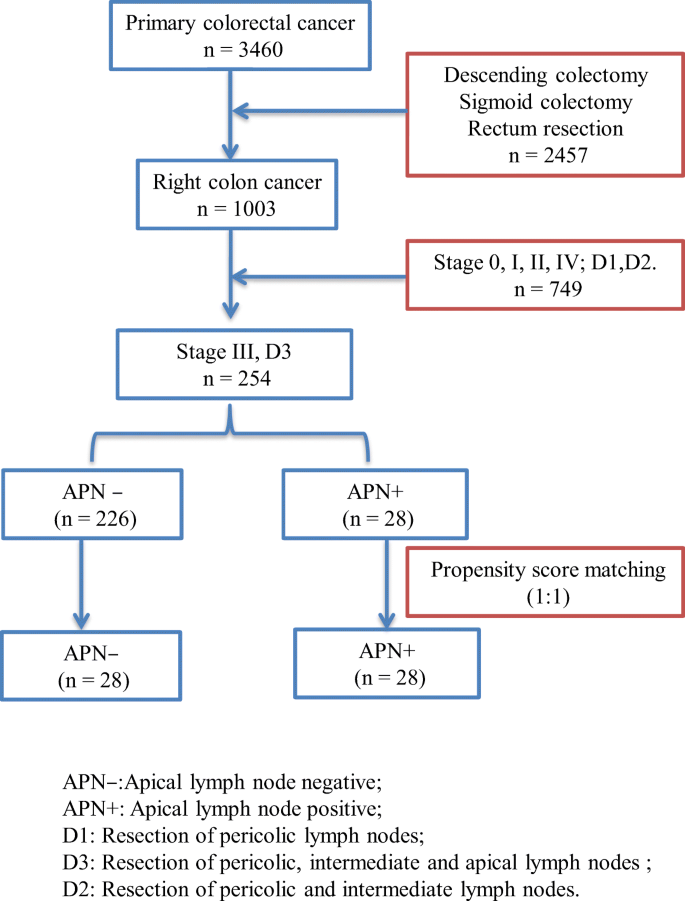 The Role Of Apical Lymph Node Metastasis In Right Colon Cancer Springerlink