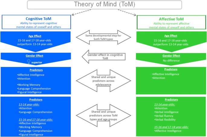 Cognitive and affective Theory of Mind in adolescence ...
