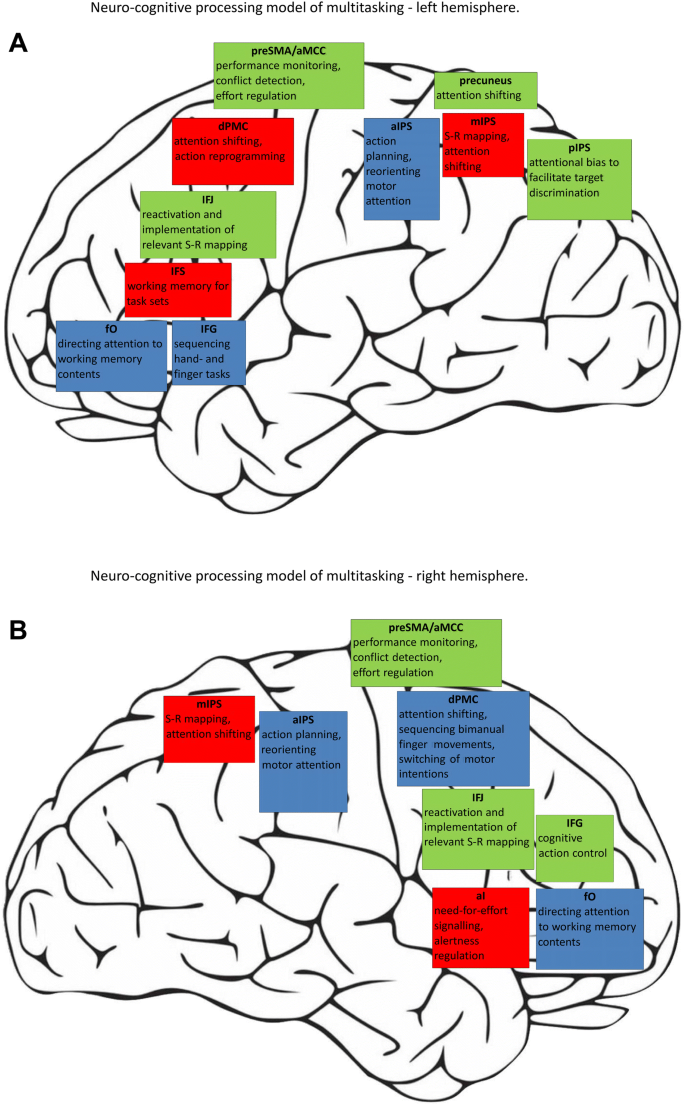 Common and distinct neural correlates of dual-tasking and task ...