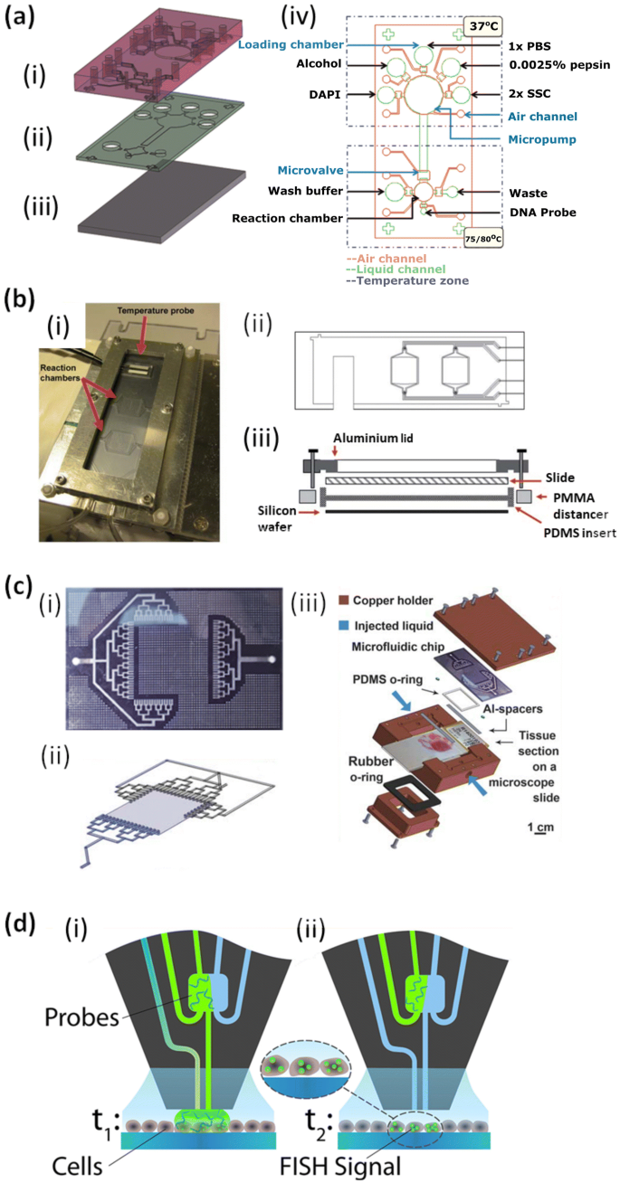 FISH and chips: a review of microfluidic platforms for FISH ...