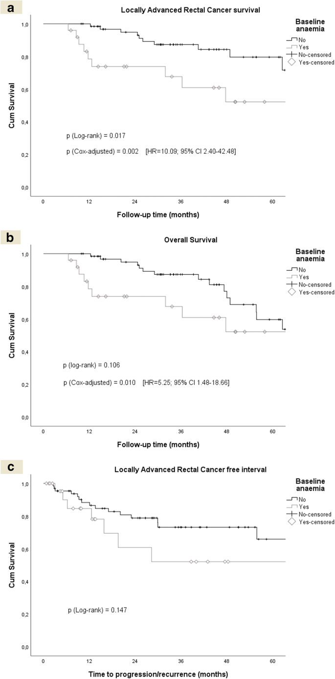 Baseline Anaemia Increases Locally Advanced Rectal Cancer Mortality In Older Patients Undergoing Preoperative Chemoradiation Springerlink