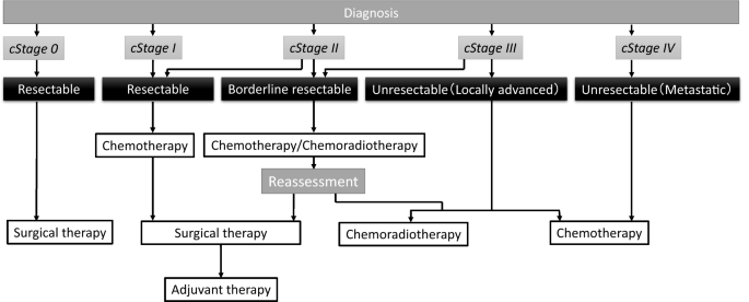 pancreatic cancer therapy)