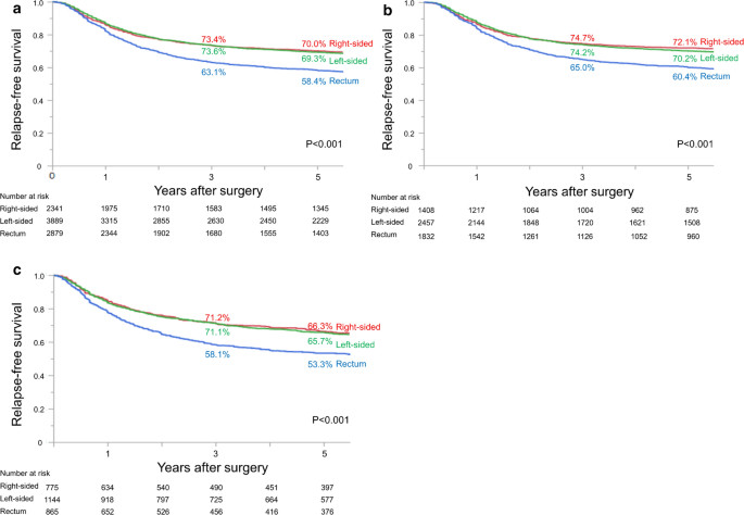 Prognostic Impact Of Primary Tumor Location In Stage Iii Colorectal Cancer Right Sided Colon Versus Left Sided Colon Versus Rectum A Nationwide Multicenter Retrospective Study Springerlink