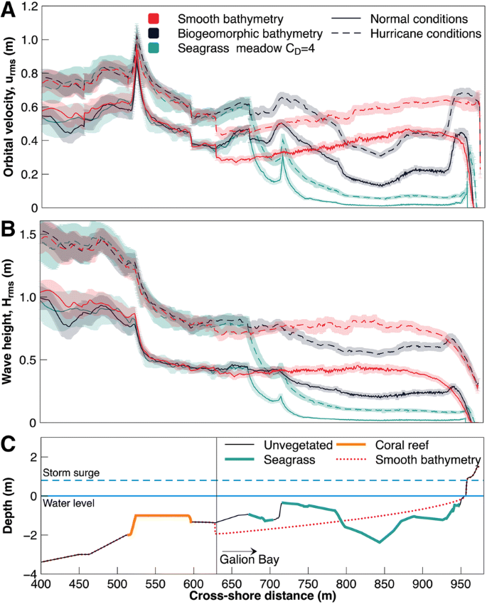Tropical Biogeomorphic Seagrass Landscapes for Coastal Protection ...