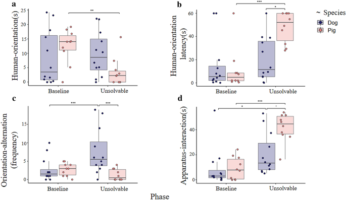 Who turns to the human? Companion pigs' and dogs' behaviour in the ...