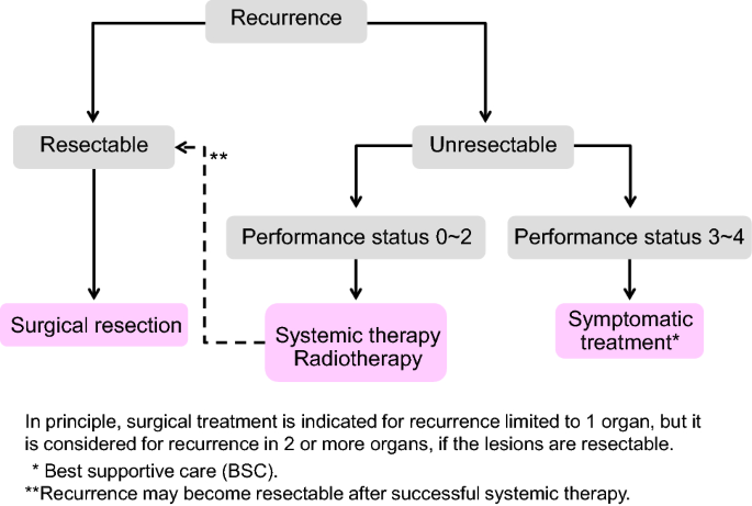 Japanese Society For Cancer Of The Colon And Rectum Jsccr Guidelines 2019 For The Treatment Of Colorectal Cancer Springerlink
