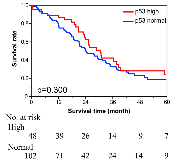 Prognostic Significance Of Serum P53 Antibody According To Kras Status In Metastatic Colorectal Cancer Patients Springerlink