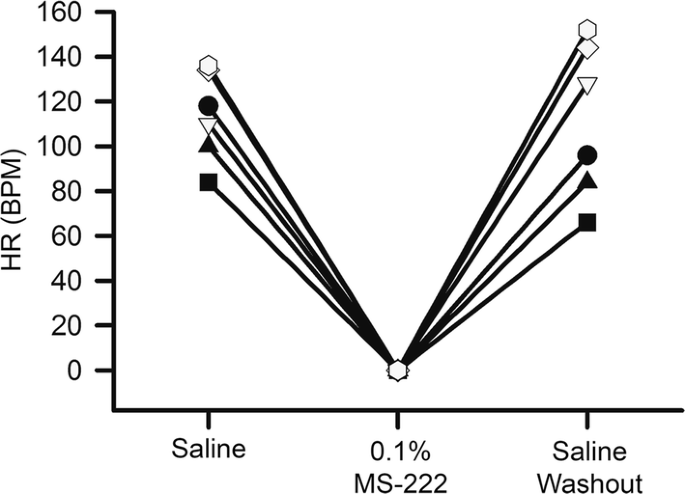 The effects of tricaine mesylate on arthropods: crayfish, crab and ...