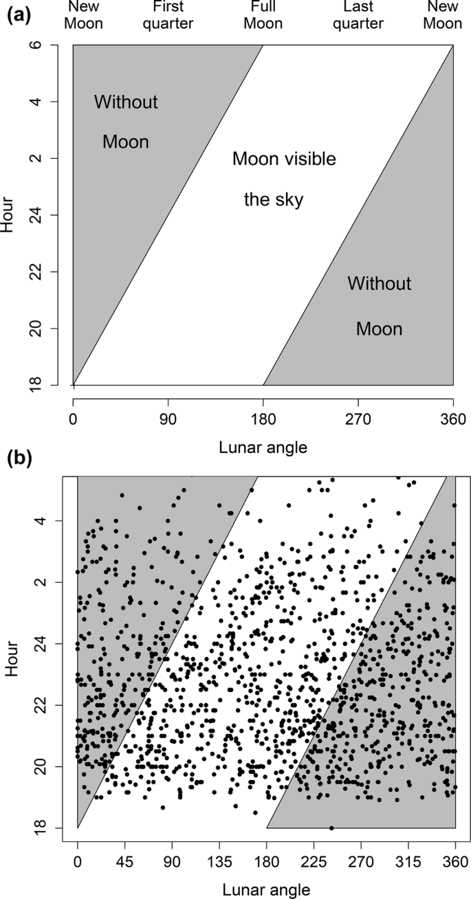 Lunar phases and hawksbill sea turtle nesting   SpringerLink