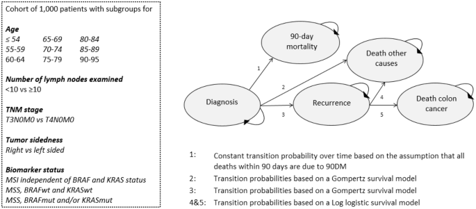 Modeling Personalized Adjuvant Treatment In Early Stage Colon Cancer Pattern Springerlink