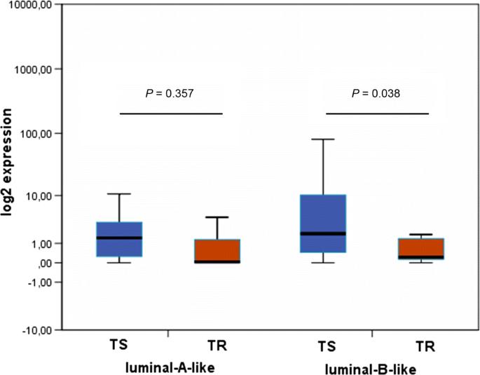 Impact of estrogen receptor   on the tamoxifen response and ...