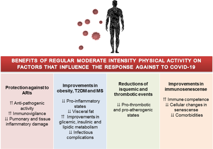 Physical exercise as a tool to help the immune system against ...