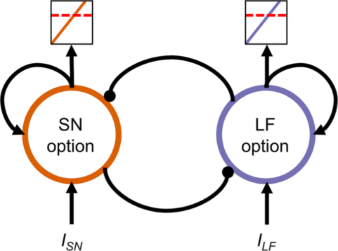 From high- to one-dimensional dynamics of decision making: testing ...