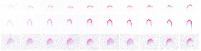 Fully inkjet-printed glucose assay fabricated on highly porous ...