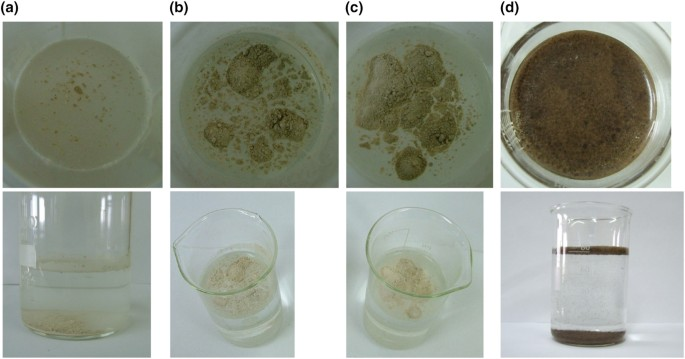 Application of krypton and nitrogen isotherms to characterisation ...