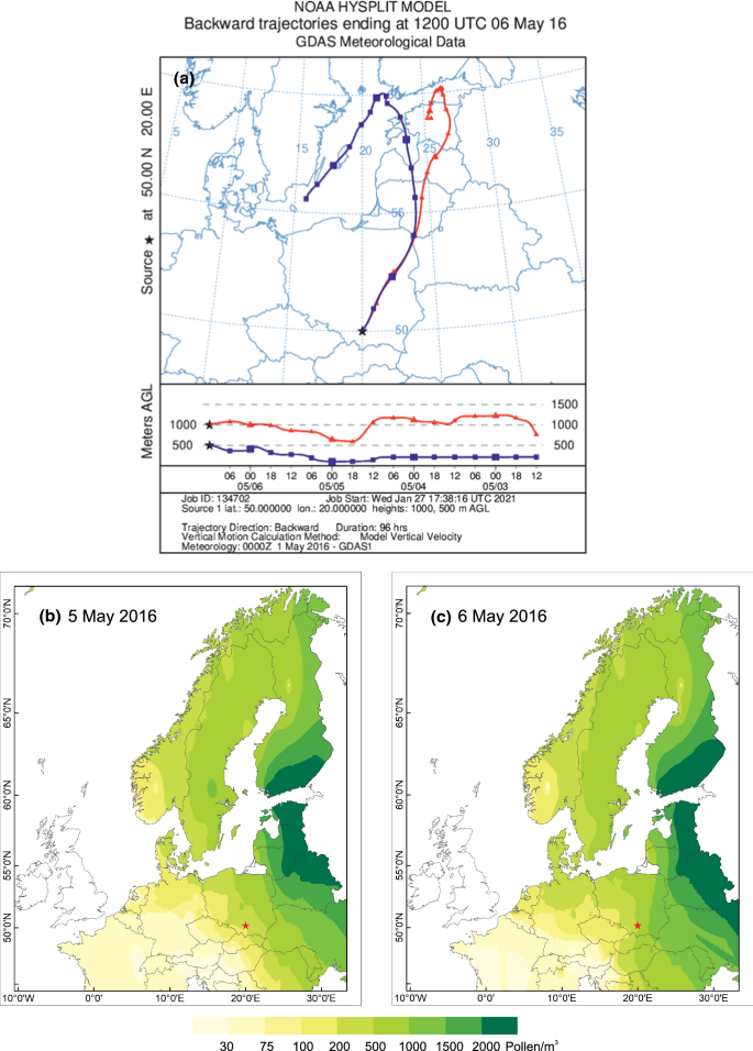 Unusually high birch (Betula spp.) pollen concentrations in Poland ...