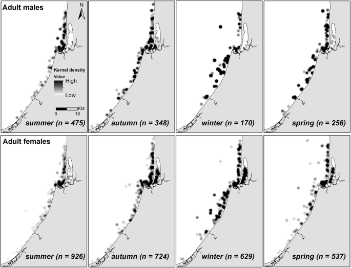 Sex-specific differences in the seasonal habitat use of a coastal ...