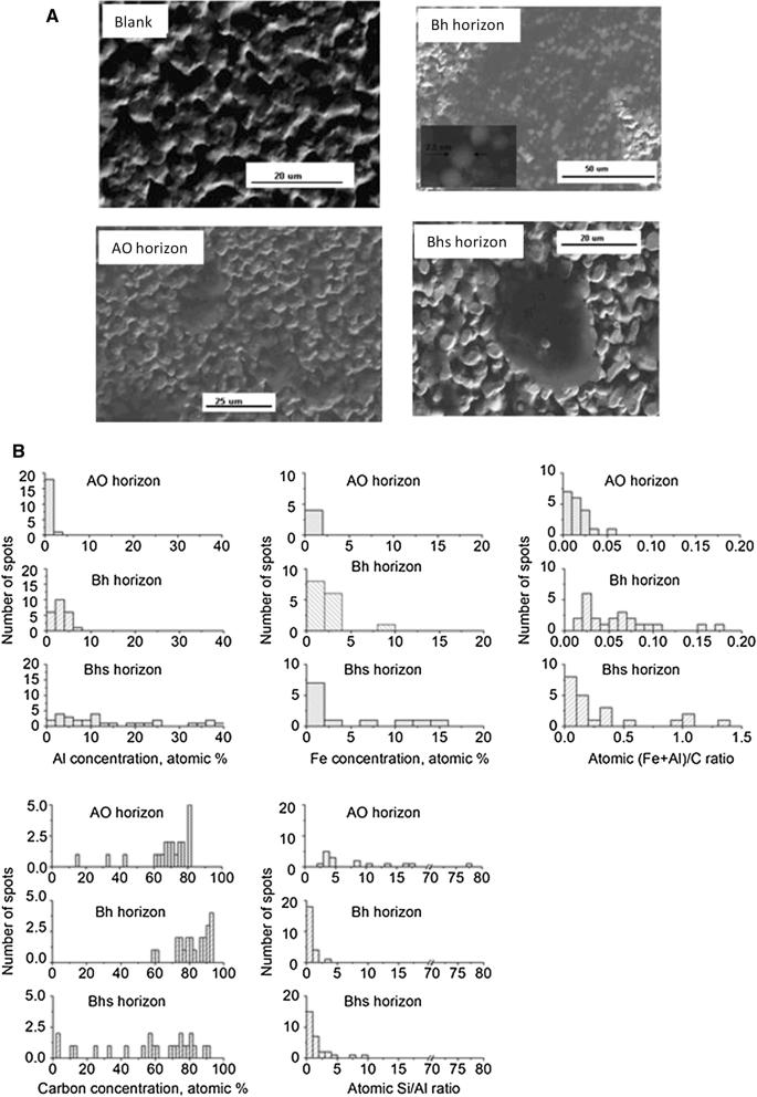 Mineral colloids mediate organic carbon accumulation in a ...